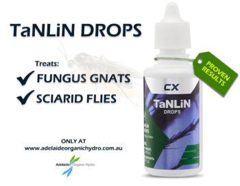 Tanlin Drops - Fungus Gnat - Sciarid Flies