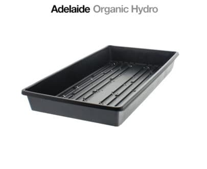 Clone Base Tray - Suits Perplex Large Hydroponic Supplies