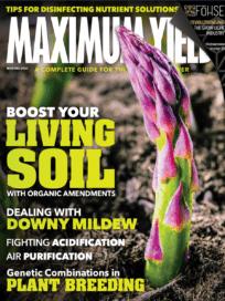 Maximum Yield Nov-Dec 20